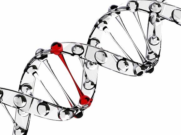 AGA(男性型脱毛症)を発症しやすいかどうか測定する遺伝子検査