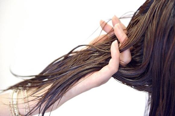 女性専用の薄毛治療も同時に受けられる